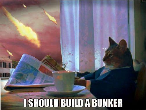 Yay 1 Cat Meme Subido Por Lordkaiser Memedroid Most intersting man in the world. yay 1 cat meme subido por lordkaiser memedroid