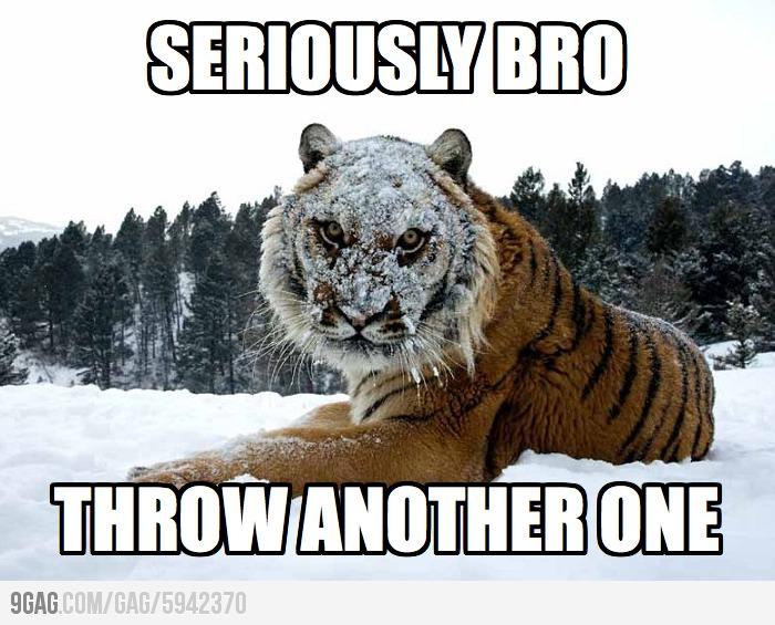 Seriously bro... - meme