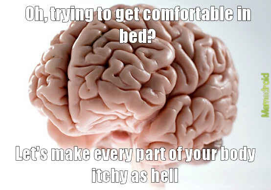 fucking brain - meme