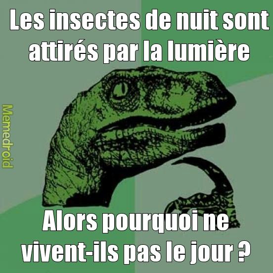 bonne question, philosoraptor ! - meme