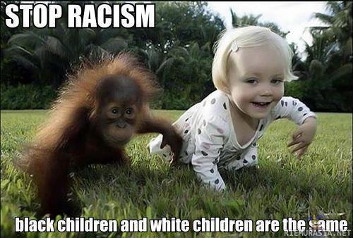 stop racism - meme