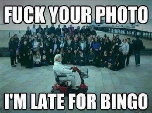 bingo is important!! - meme
