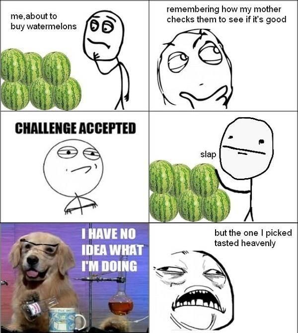 watermelons :D - meme