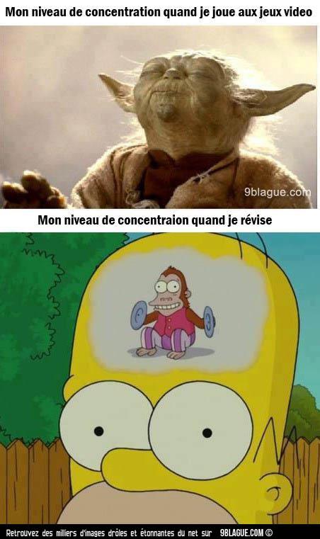 concentration - meme